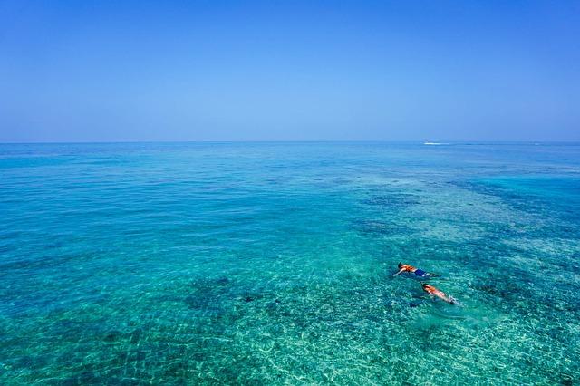 snorkeling en el caribe